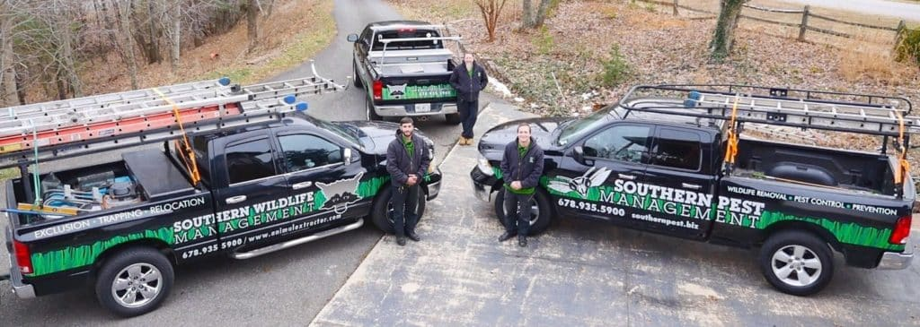 Duluth Wildlife Control Team