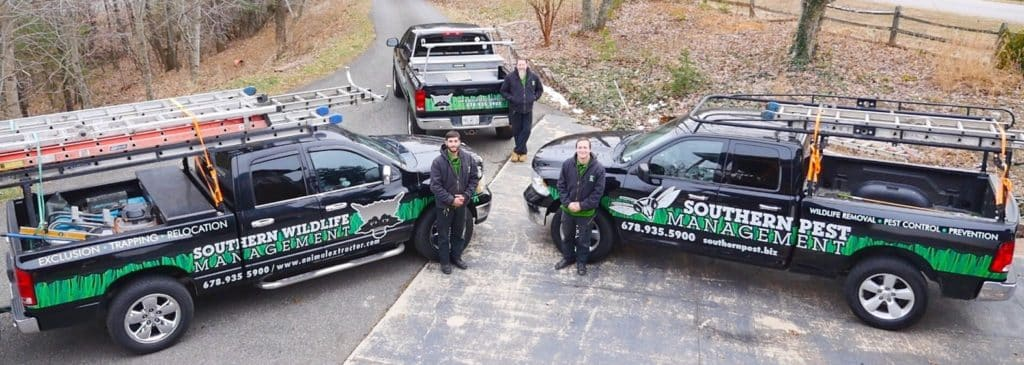 dawsonville Pest Control Team